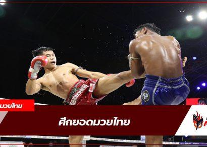ยอดมวยไทย